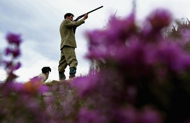 Grouse moors generated only £30 per hectare per year compared to £500 per hectare per year for agriculture