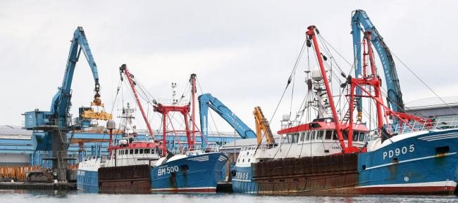 Scottish scallop dredgers are breaking the law and not being punished accordingly