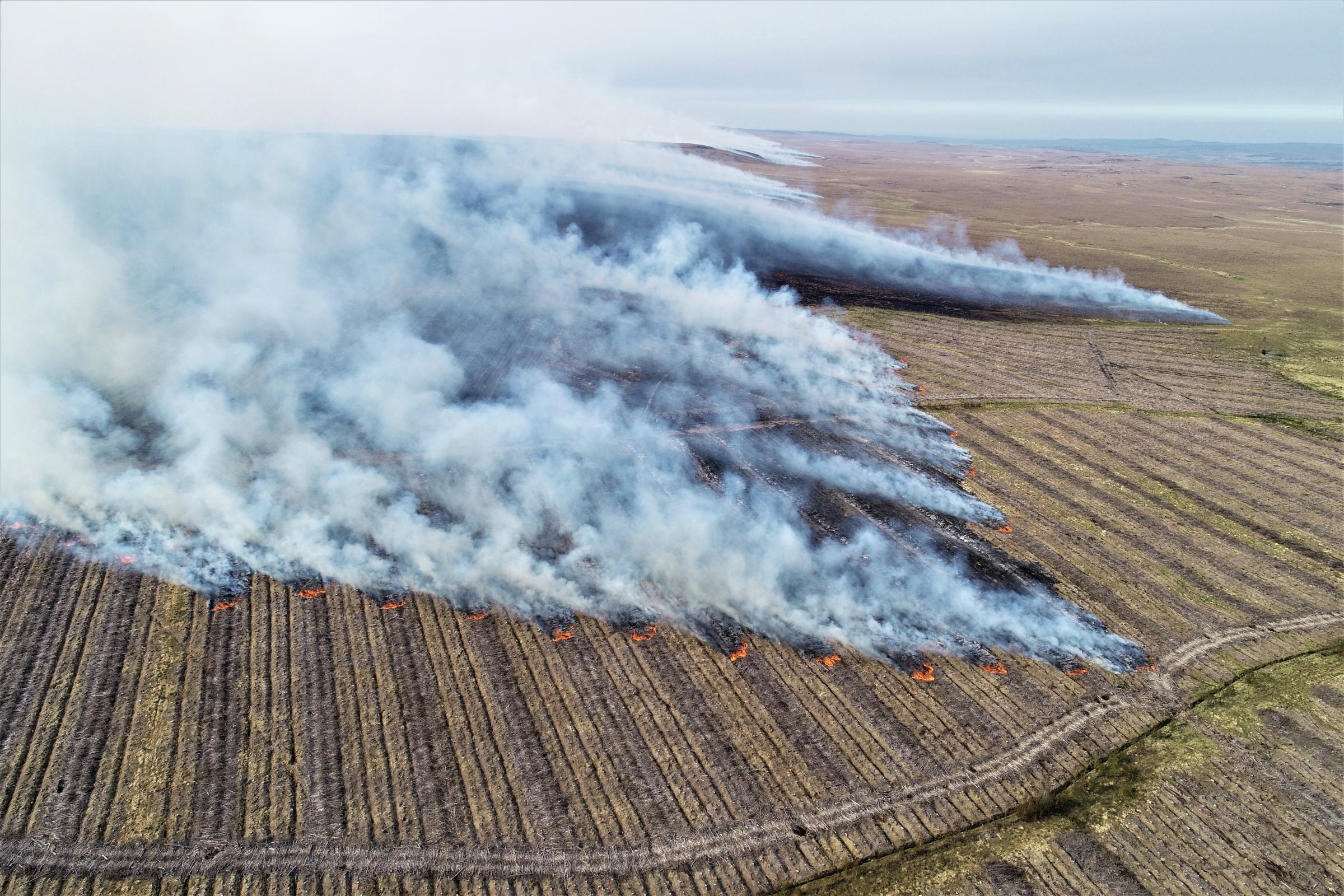 Scottish peatlands fire created six days' worth of CO2 emissions