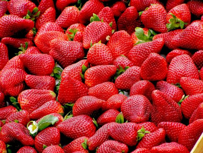 Scotty Brand saw its most successful year in sales of berries such as strawberries