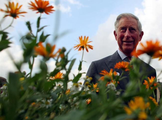 Prince Charles travelled to Balmoral and tested positive – despite a nationwide travel warning