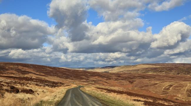 The local community has been engaged in efforts to buy Langholm Moor