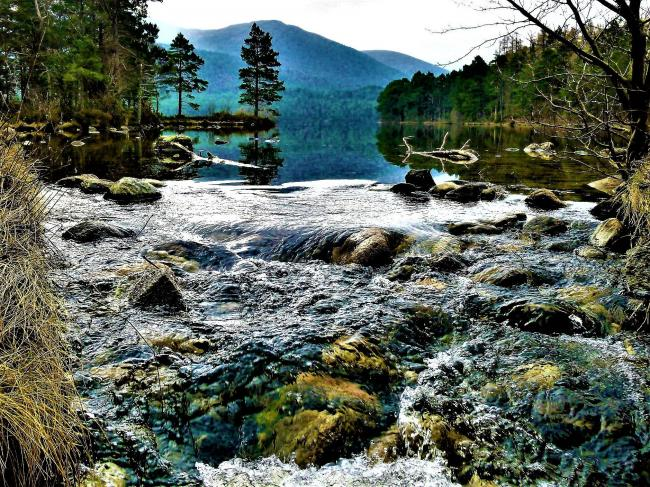 Loch An Eilein sits a little south of Aviemore in the Cairngorms National Park