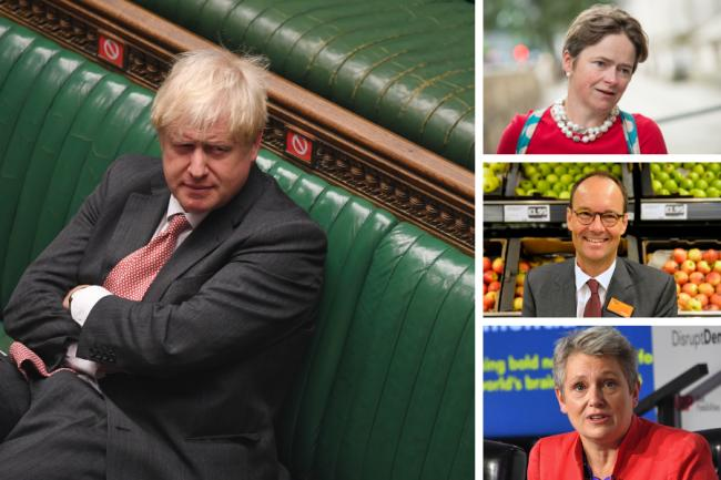 Dido Harding, Mike Coupe, and Kate Bingham have all been hired to top Covid roles by Boris Johnson's Government