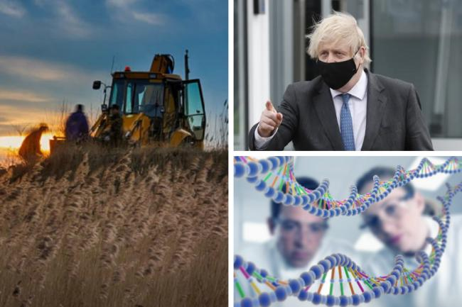 Boris Johnson expressed a desire to change the law around genetically modified food on his first day in office