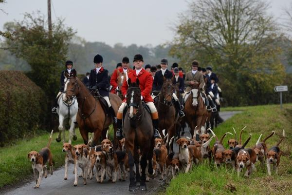 Green MSP Alison Johnstone wants tougher laws on the control of fox hunting which would bring Scots into line with England and Wales