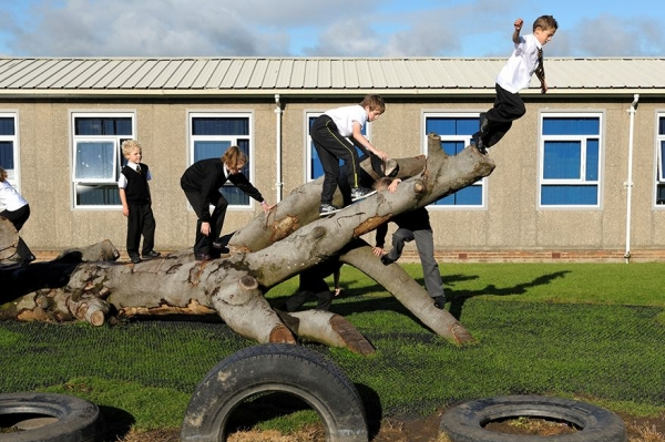 Schoolchildren playing on a fallen tree in Wishaw