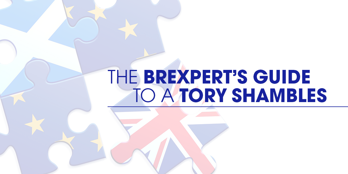 The Brexpert's Guide To A Tory Shambles