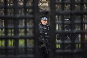 An armed officer standing guard at Westminster last week