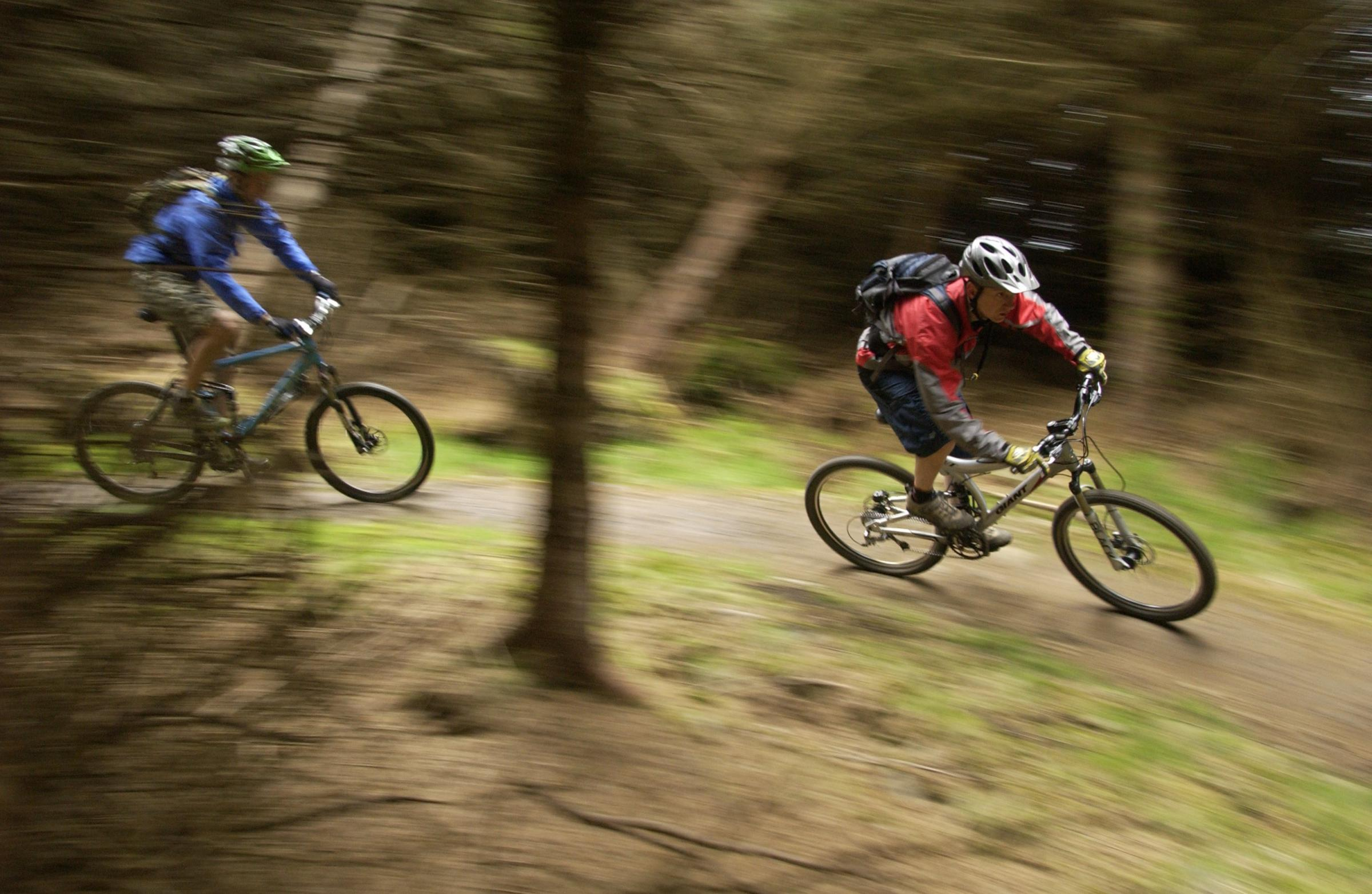 The 7stanes mountain biking trails at Glentress Forest in Peebles are among Scottish attractions popular with young people