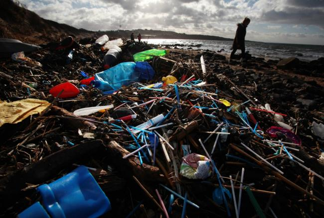 Plastic waste can negatively impact on marine biodiversity in several ways