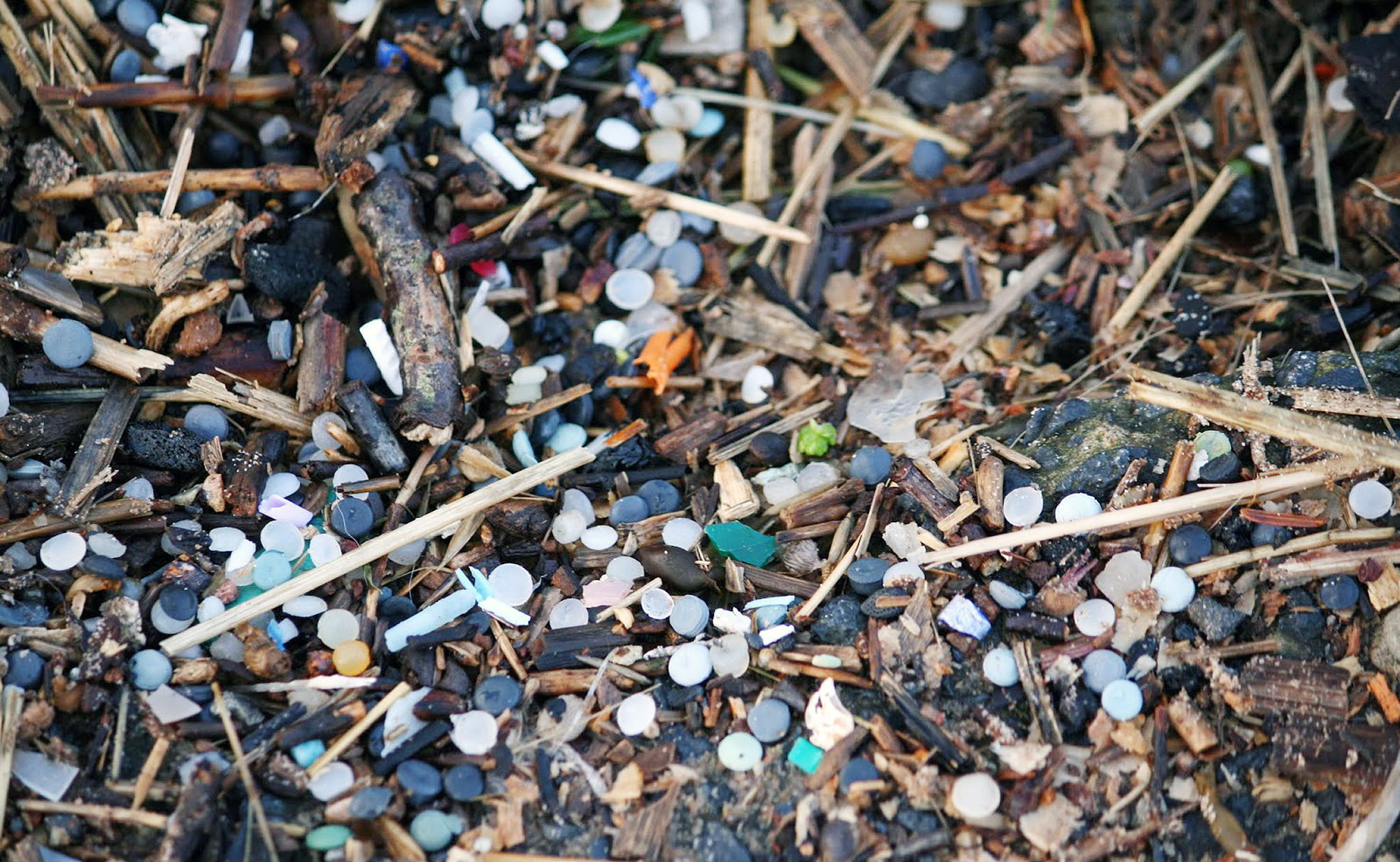 The tiny plastic pellets plague the beach in the Firth of Forth