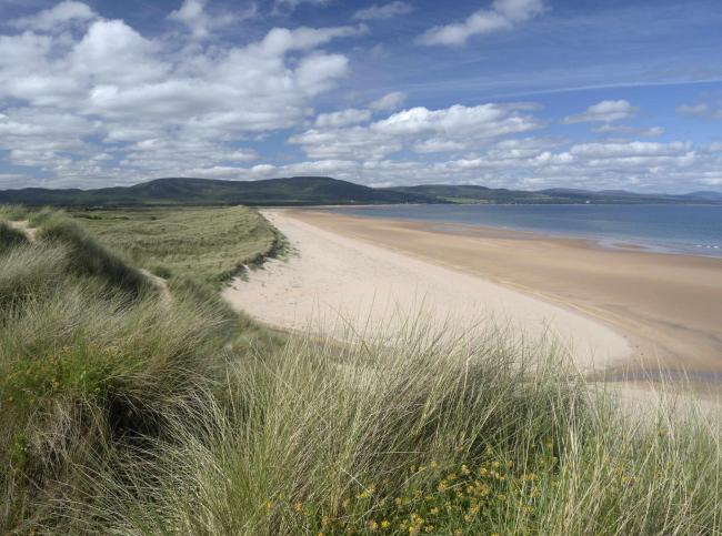The Coul Links is one of Scotland's richest areas for undisturbed species