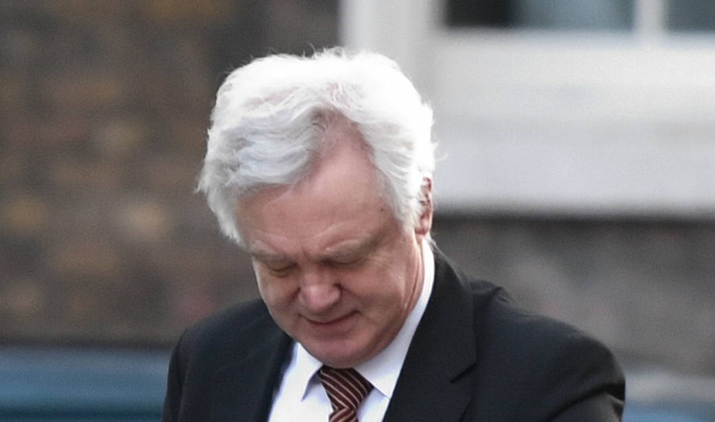 David Davis trashed the agreement on Northern Ireland