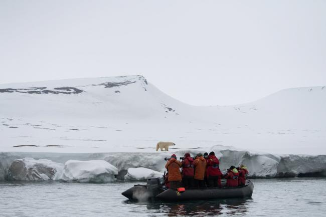 Sarah Marshall with her fellow tourists armed with their cameras as they get up close to a polar bear in Svalbard. Photograph: PA