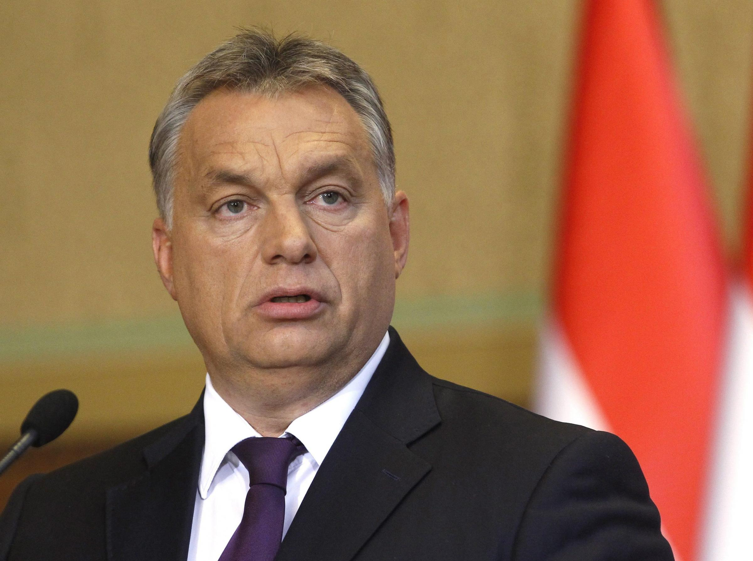 Tory MEPs voted to support Hungarian prime minister Viktor Orban