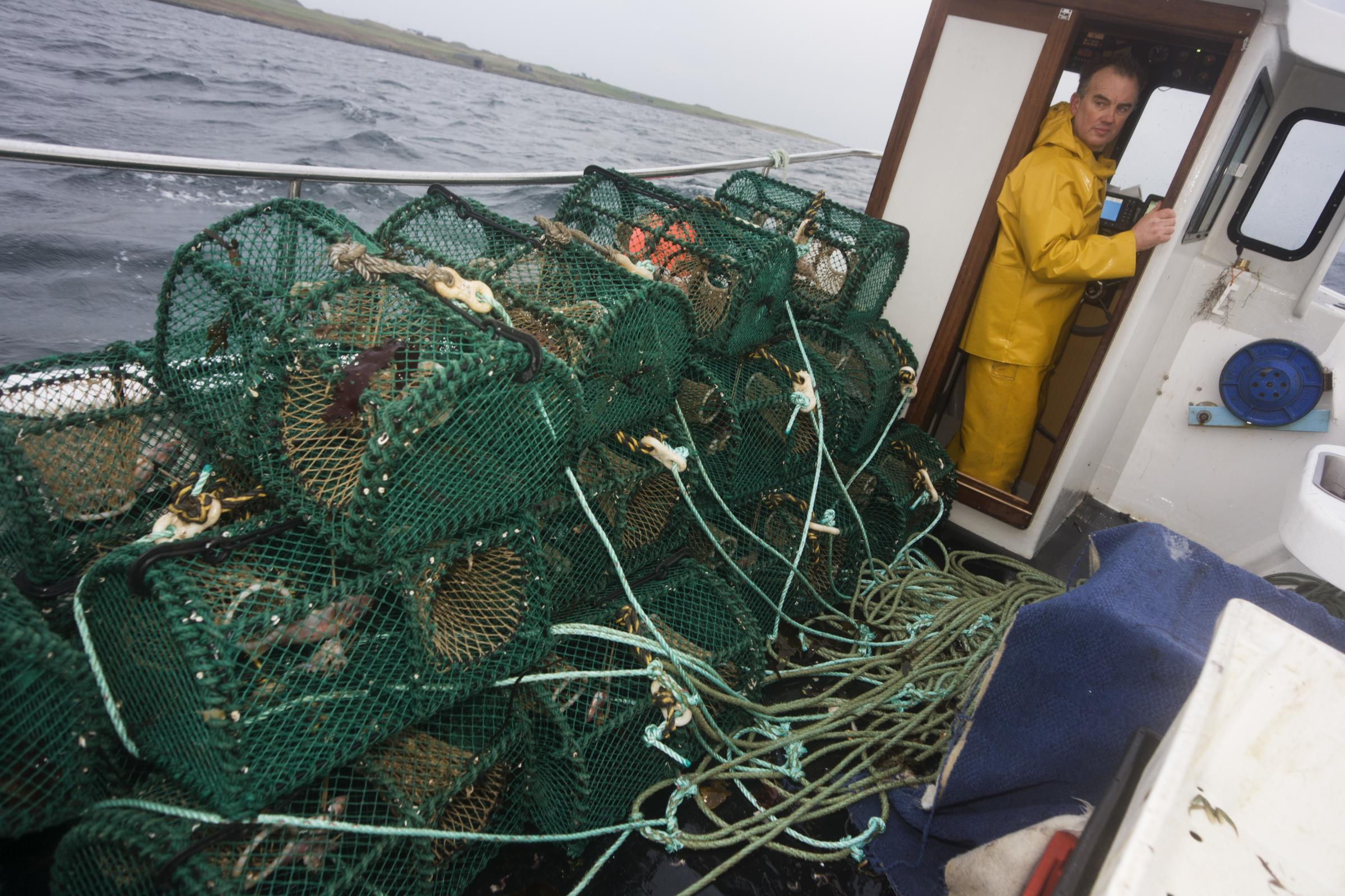 Trawling within the three-mile limit destroyed most of the fragile spawning areas of our most valuable fin fish