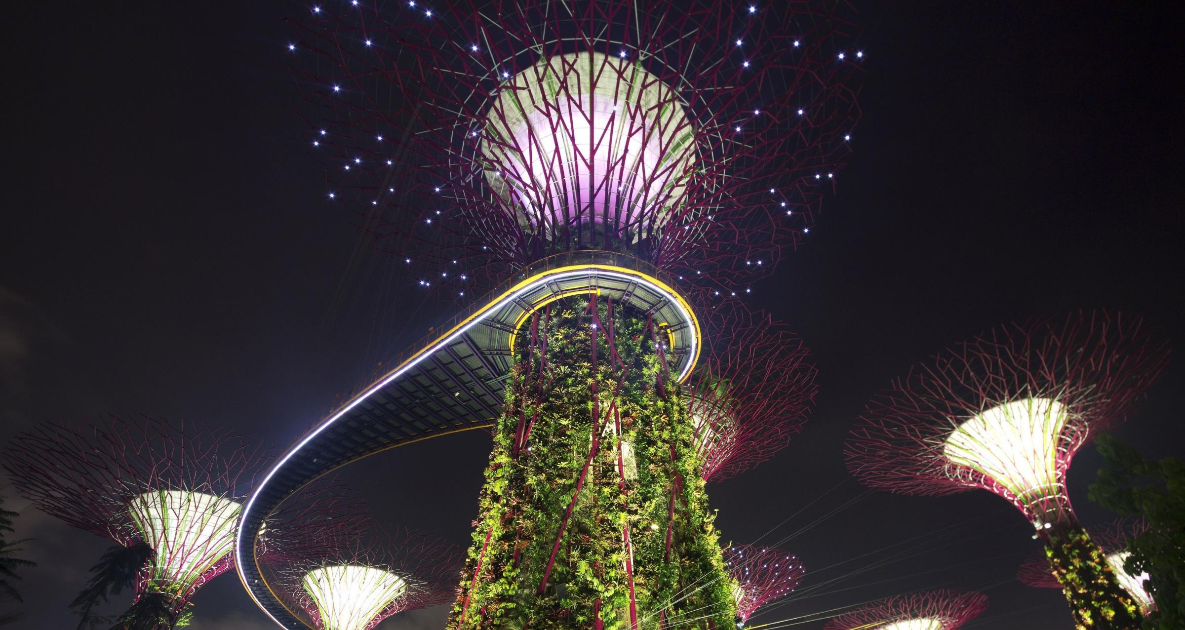 The Gardens by the Bay Supertrees are one of many attractions in the city