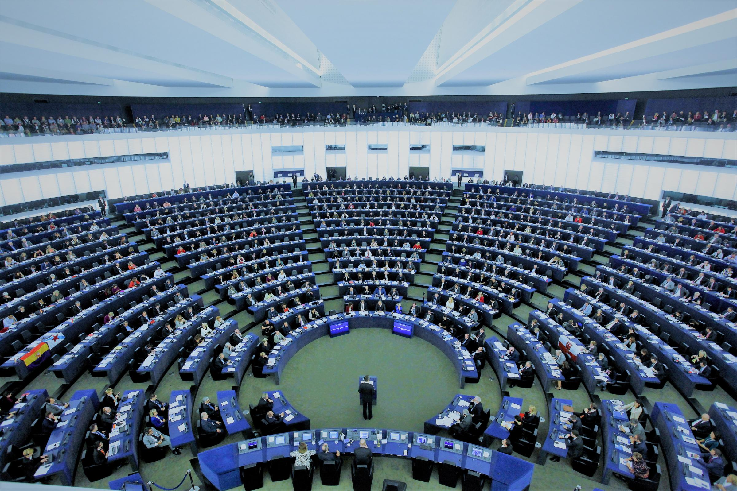 The European Parliament ... we need to have representation there while we remain in EU