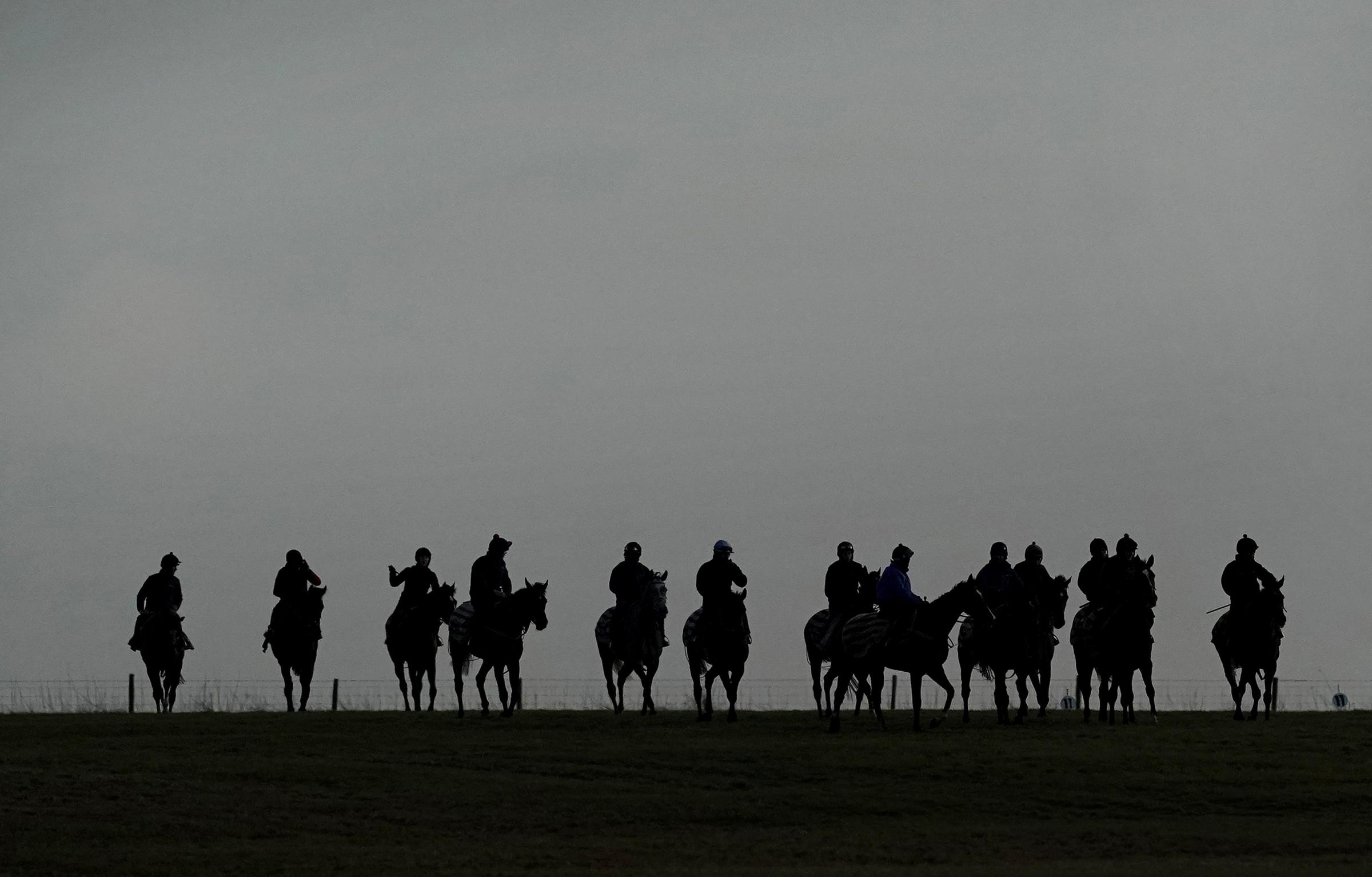 At some point today the British Horseracing Authority will decide if racing can resume later this week