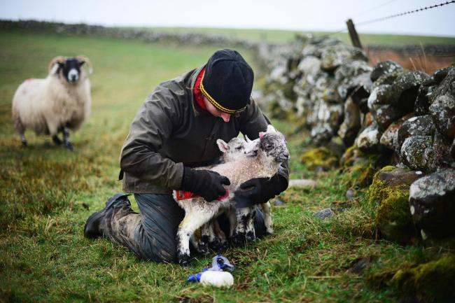 Scottish farming organisations argue Scotland is owed the £190m of EU convergence uplift payments