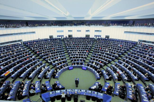 Only 2% of MEPs are from racial and ethnic minority backgrounds