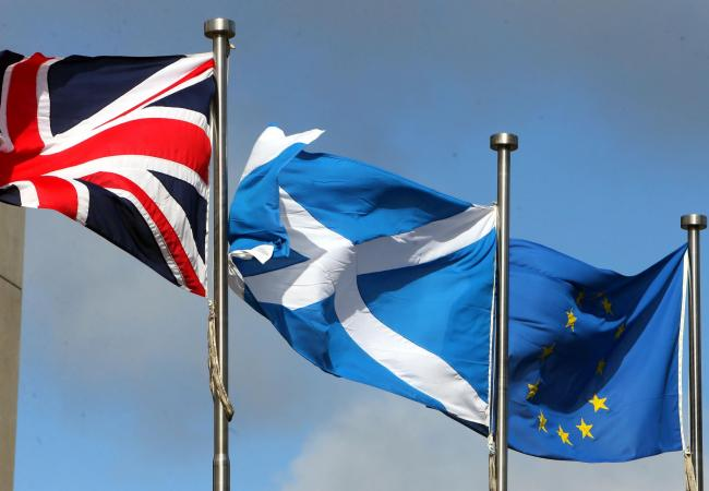 A decision to remove the EU flag from Holyrood has been met with criticism