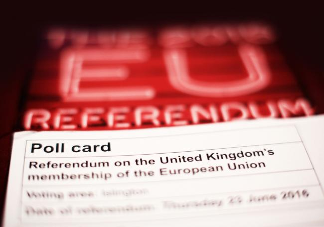 The focus on referendums is a sign of the failure of the UK democratic process