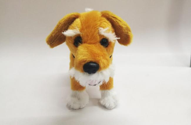 Our Wee Ginger Dug teddy comes with one of the subscription offers