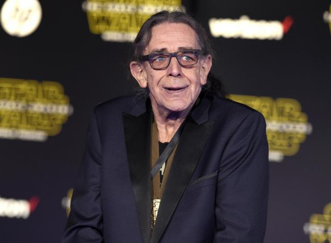 Peter Mayhew was best known for playing Chewbacca
